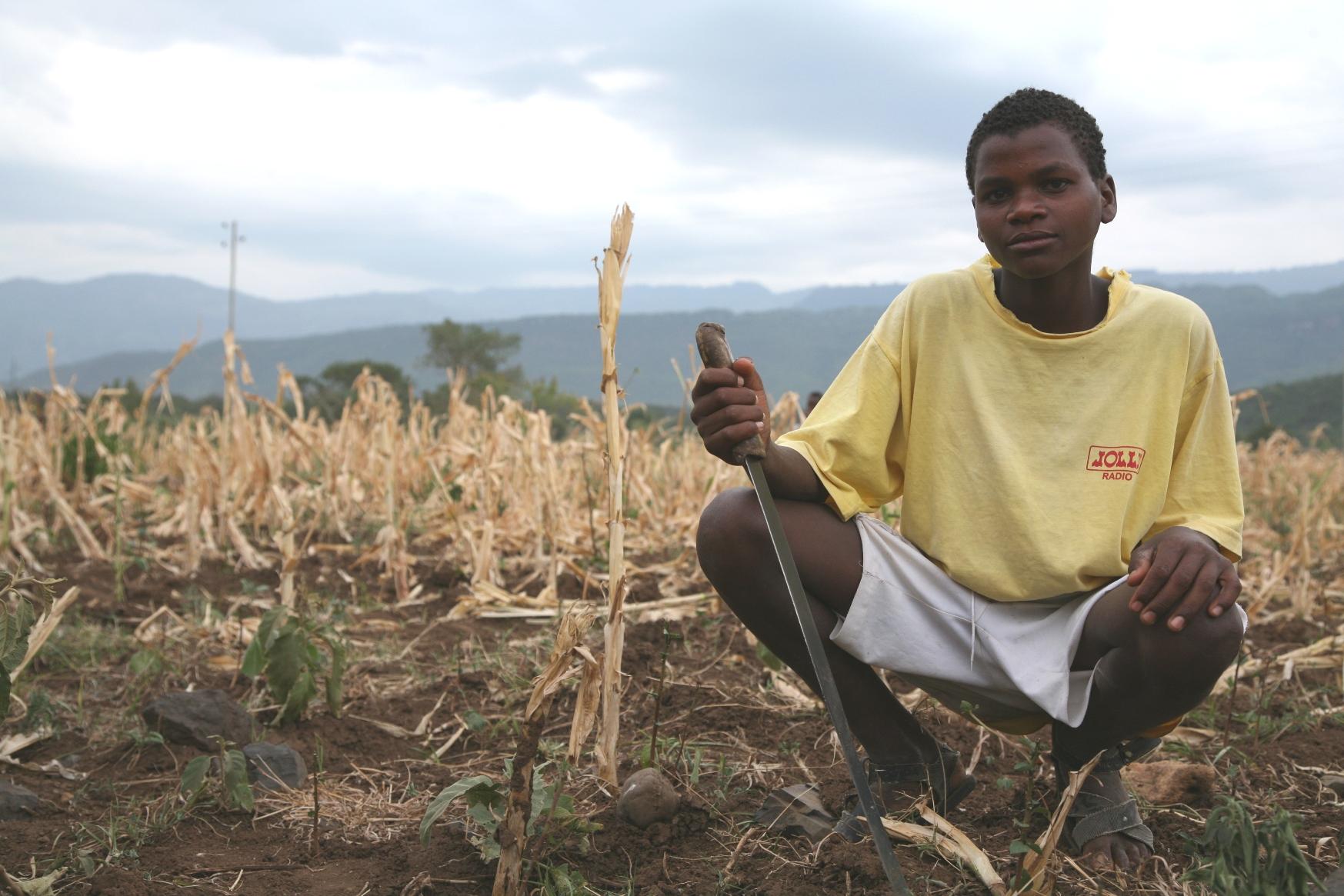 Dürre in Äthiopien-ein Kleinbauer auf seinem Feld.
