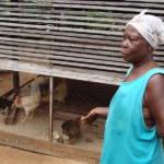 Ghanaer haben gegen die Billig-Produkte der EU keine Chance. | Bild (Ausschnitt): © Elitre [Public domain] - Wikimedia Commons