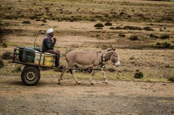 afrikanischer Bauer