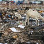 Elektroschrotthalde in Afrika Durch übermäßigen Konsum der Industrienationen entsteht viel Müll, der häufig auf den afrikanischen Kontinent exportiert wird. | Bild (Ausschnitt): © Fairphone [CC BY-NC-ND 2.0] - Flickr