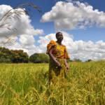Landschaft Afrika Landschaft Afrika | Bild (Ausschnitt): © Oxfam East Africa [CC BY 2.0] - Flickr