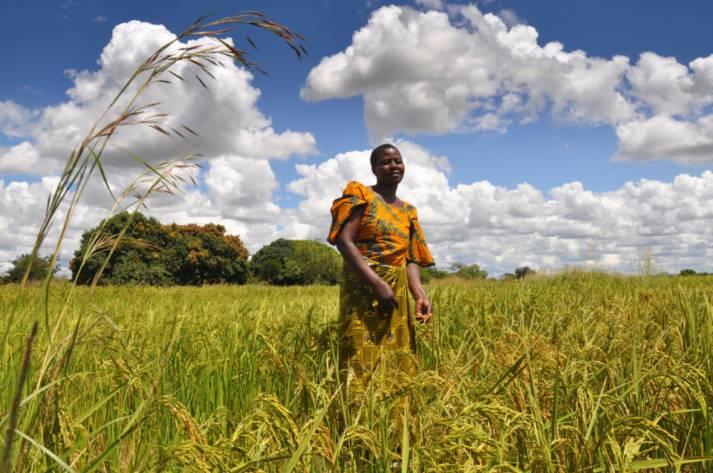 Landschaft Afrika Landschaft Afrika |  Bild: © Oxfam East Africa [CC BY 2.0]  - Flickr