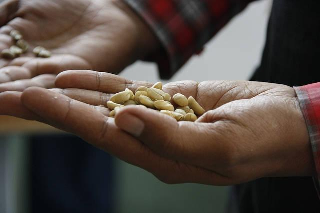 EU-Handelspolitik Die EU-Handelspolitik, insbesondere in dem Agrar- und Kakaosektor, nimmt Menschen ihre Existenzgrundlage weg. | Bild: © DFID - UK Department for International Development [CC BY 2.0]  - Flickr