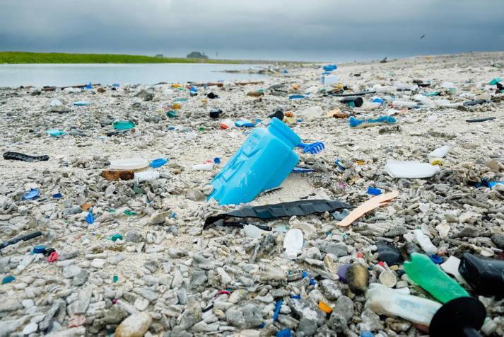 Plastikverseuchter Strand auf Clipperton Rock Der Plastikmüll stapelt sich auf der Insel Clipperton Rock, ca. 1000 Kilometer südwestlich von Mexiko |  Bild: ©  Clifton Beard [CC BY-NC 2.0]  - flickr