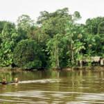Amazonas Der Amazonas wird für den Bau von Ölplattformen abgeholzt | Bild (Ausschnitt): © Francisco Chavez [CC BY 2.0] - flickr