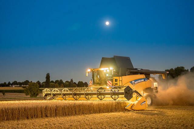 Die weltweite Getreideernte konnte in den Jahren 2018/19 den Bedarf nicht decken |  Bild: © Christian Kothe [CC BY-ND 2.0]  - flickr