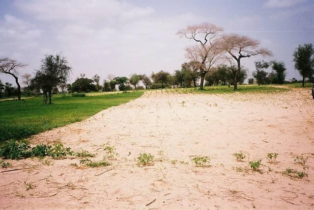 Böden in Ländern der Sub-Sahara: Immer attraktiver für Investoren Böden in Ländern der Sub-Sahara: Immer attraktiver für Investoren |  Bild: © Rikolto [CC BY-NC 2.0]  - Flickr